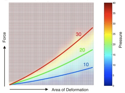 Area of Deformation / Force